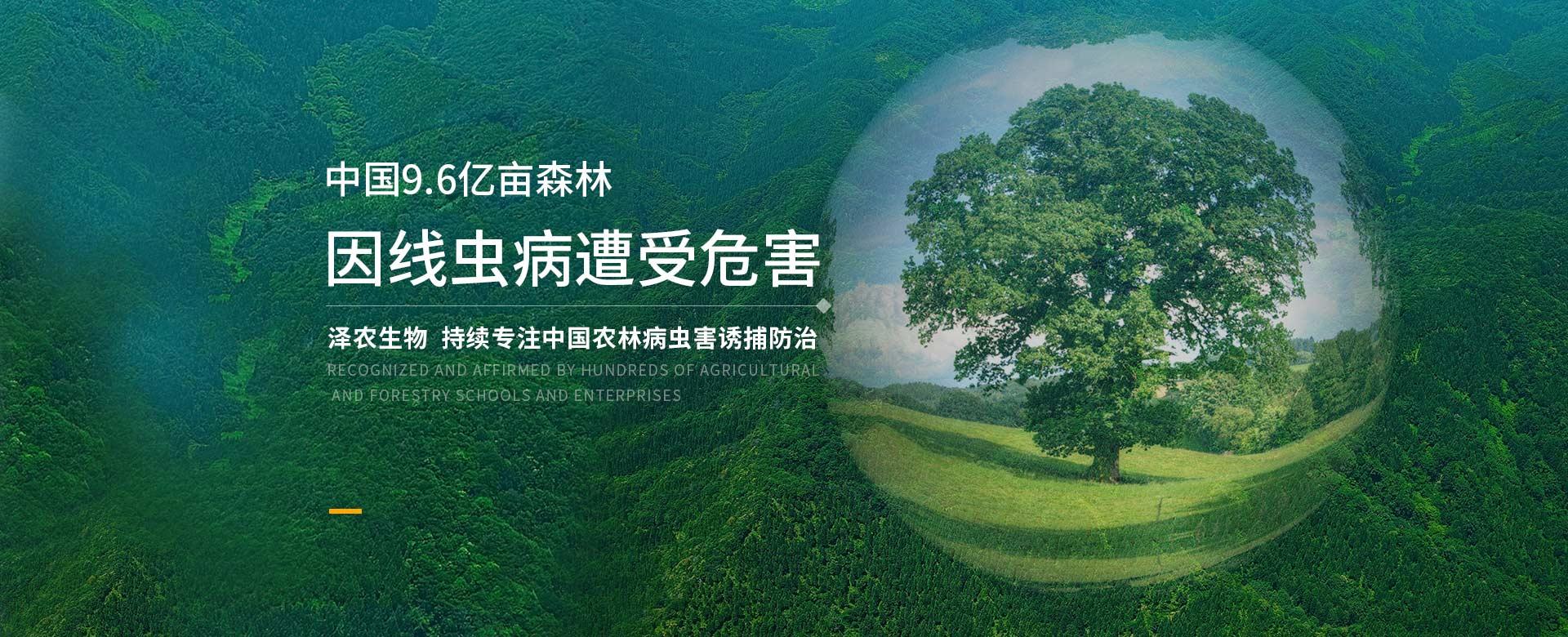 泽农生物持续专注中国农林病虫害诱捕防治