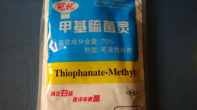 专业知识,专家解读小麦赤霉病药剂防治!