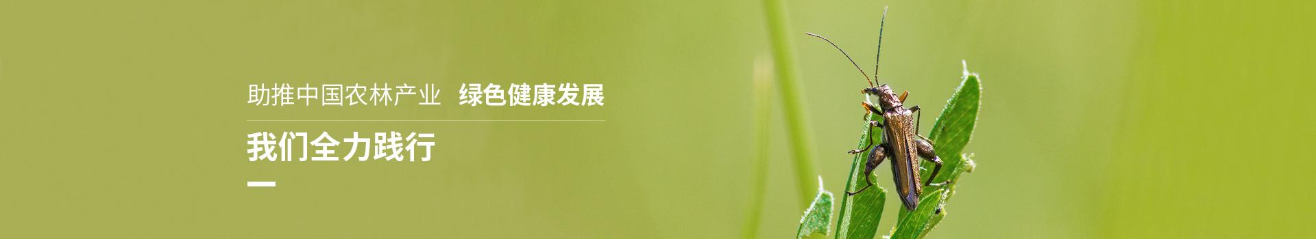 泽农生物助推中国农林产业、绿色健康发展