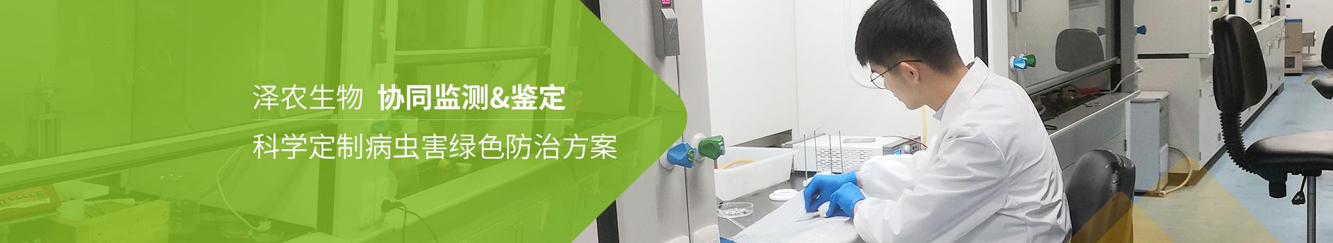 泽农生物科学定制害虫害绿色防治方案