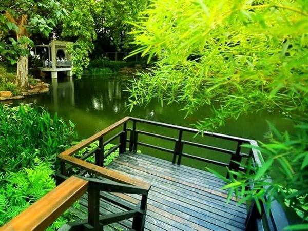 上海林业局生物诱捕剂案例!